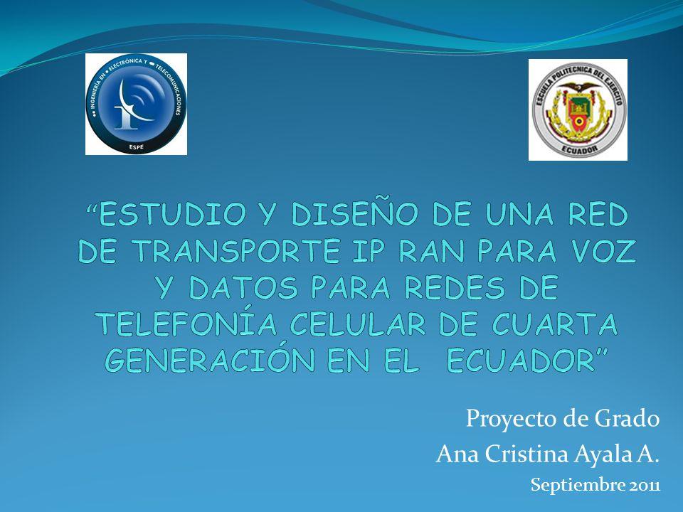 Proyecto de Grado Ana Cristina Ayala A. Septiembre 2011