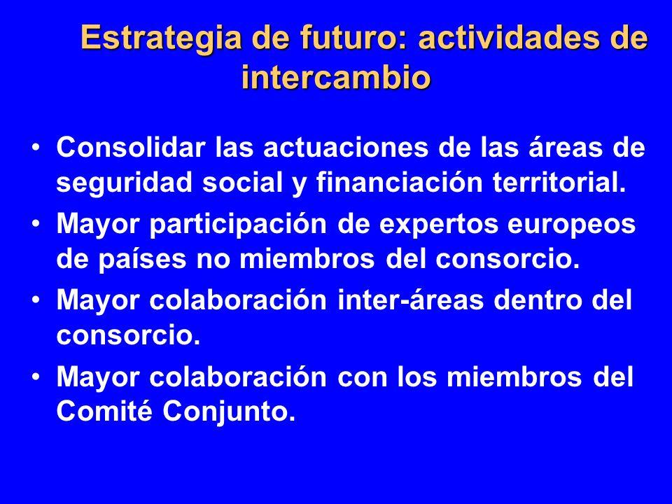 Estrategia de futuro: actividades de intercambio Consolidar las actuaciones de las áreas de seguridad social y financiación territorial. Mayor partici