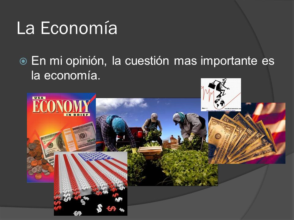 La Economía En mi opinión, la cuestión mas importante es la economía.