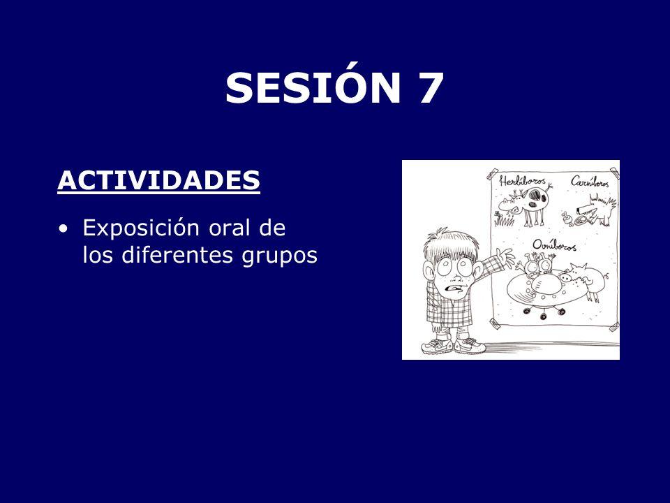 SESIÓN 7 ACTIVIDADES Exposición oral de los diferentes grupos