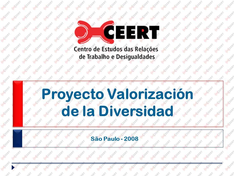 Proyecto Valorización de la Diversidad São Paulo - 2008