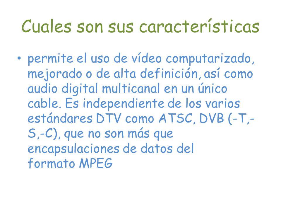 Cuales son sus características permite el uso de vídeo computarizado, mejorado o de alta definición, así como audio digital multicanal en un único cab