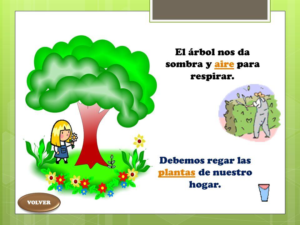 Participar en el cuidado y preservación de los seres vivos, de su entorno familiar, escolar y comunitario PLANTAS EN EL HOGAR Menú