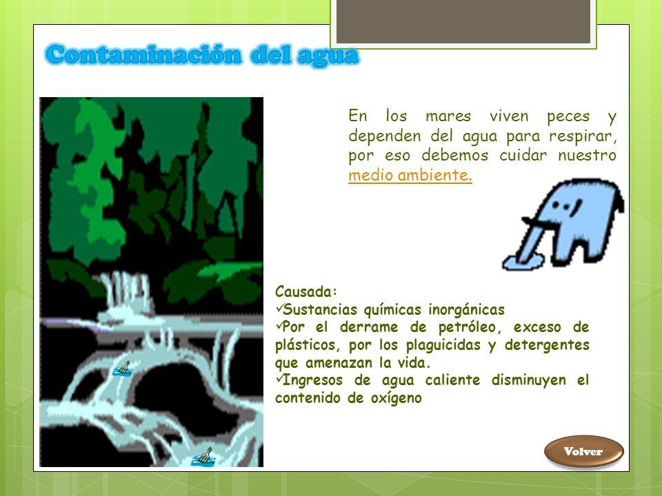 PRÁCTICAS QUE CONTRIBUYAN A PRESERVAR EL MEDIO AMBIENTE Menú CONTAMINACIÓN AMBIENTAL Contaminación del agua Contaminación del suelo Contaminación del aire