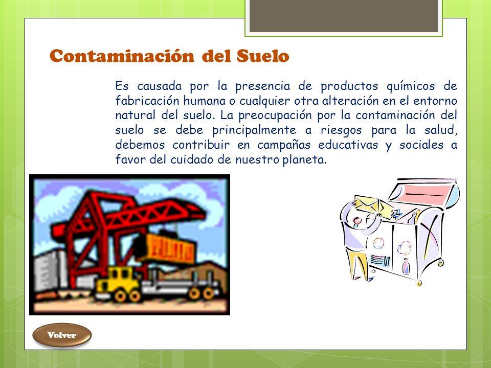 Causada: Sustancias químicas inorgánicas Por el derrame de petróleo, exceso de plásticos, por los plaguicidas y detergentes que amenazan la vida.