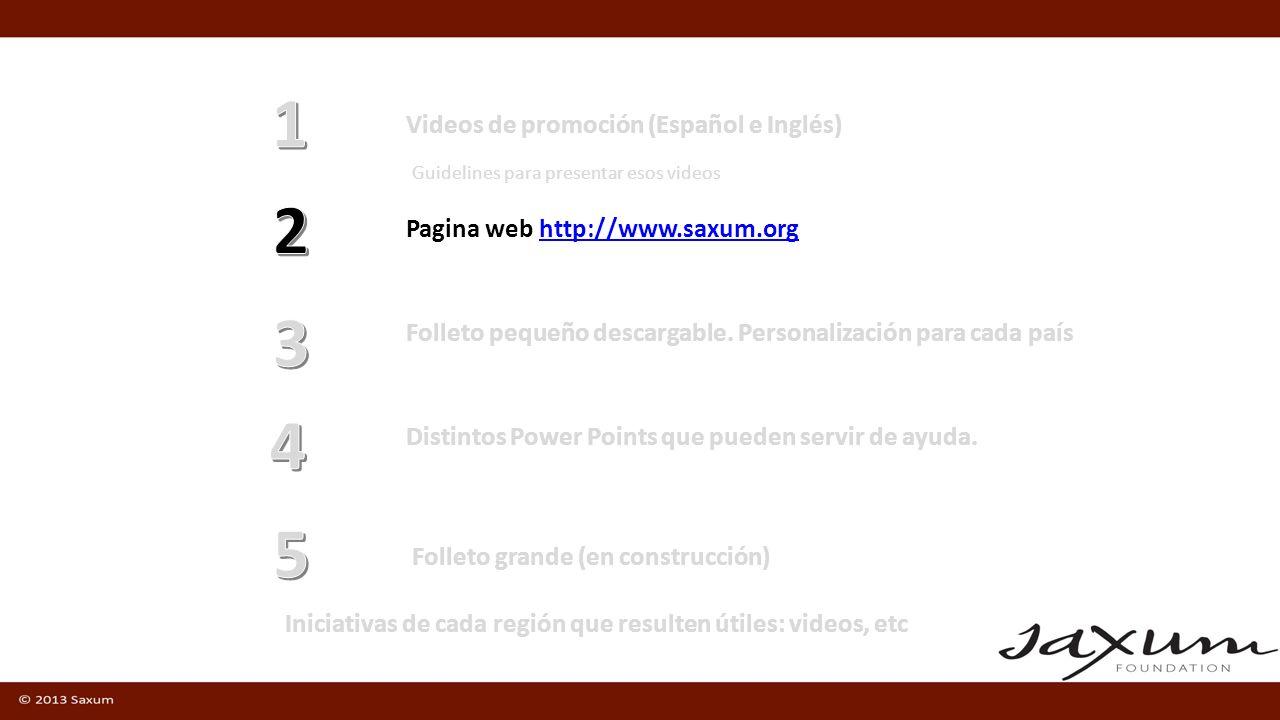 Videos de promoción (Español e Inglés) Pagina web http://www.saxum.orghttp://www.saxum.org Guidelines para presentar esos videos Folleto pequeño desca