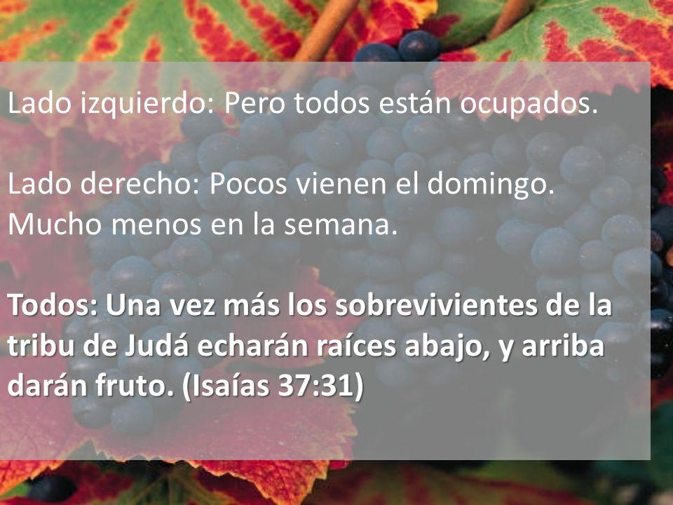 Todos: Una vez más los sobrevivientes de la tribu de Judá echarán raíces abajo, y arriba darán fruto. (Isaías 37:31) Lado izquierdo: Pero todos están