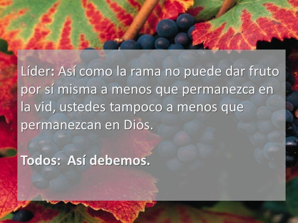 Líder: Así como la rama no puede dar fruto por sí misma a menos que permanezca en la vid, ustedes tampoco a menos que permanezcan en Dios. Todos: Así