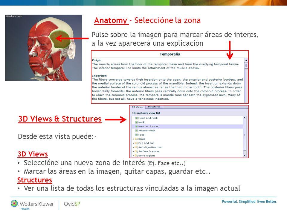 Pulse sobre la imagen para marcar áreas de interes, a la vez aparecerá una explicación Anatomy - Seleccióne la zona 3D Views & Structures Desde esta v