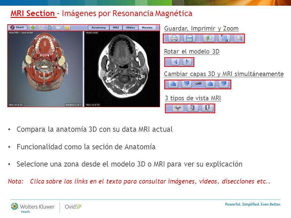 MRI Section – Imágenes por Resonancia Magnética Compara la anatomía 3D con su data MRI actual Funcionalidad como la seción de Anatomía Selecione una z