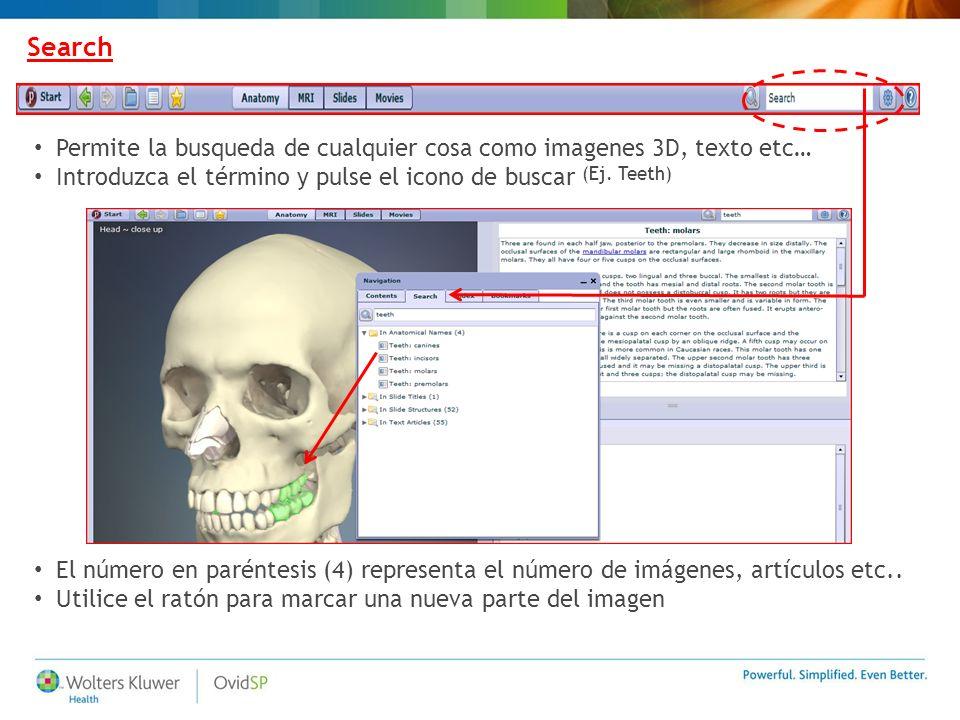 Search Permite la busqueda de cualquier cosa como imagenes 3D, texto etc… Introduzca el término y pulse el icono de buscar (Ej. Teeth) El número en pa