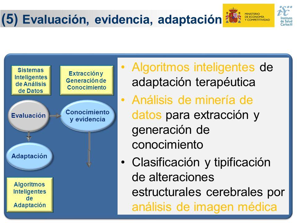 24 (5) Evaluación, evidencia, adaptación Evaluación Adaptación Sistemas Inteligentes de Análisis de Datos Conocimiento y evidencia Conocimiento y evid