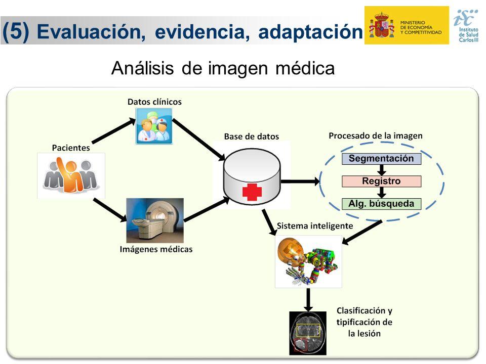 27 (5) Evaluación, evidencia, adaptación Evaluación Adaptación Sistemas Inteligentes de Análisis de Datos Conocimiento y evidencia Conocimiento y evid