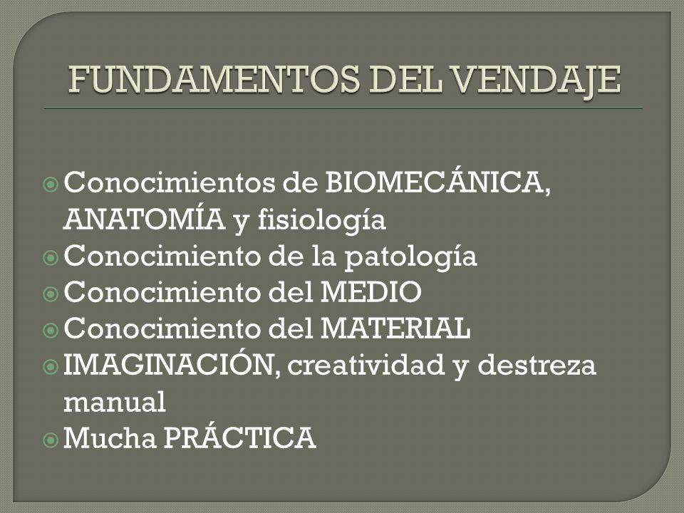 Conocimientos de BIOMECÁNICA, ANATOMÍA y fisiología Conocimiento de la patología Conocimiento del MEDIO Conocimiento del MATERIAL IMAGINACIÓN, creativ