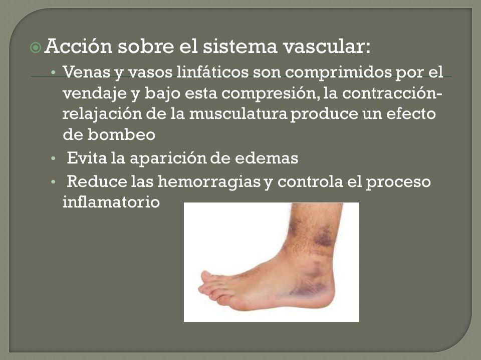 Acción sobre el sistema vascular: Venas y vasos linfáticos son comprimidos por el vendaje y bajo esta compresión, la contracción- relajación de la mus
