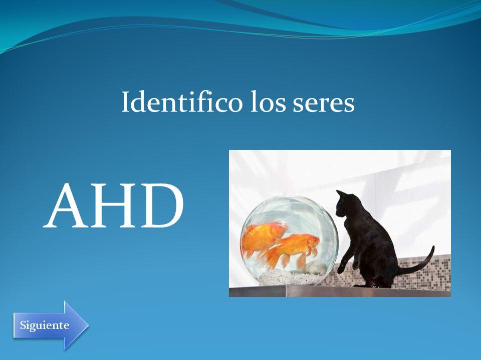 AHD Identifico los seres Siguiente