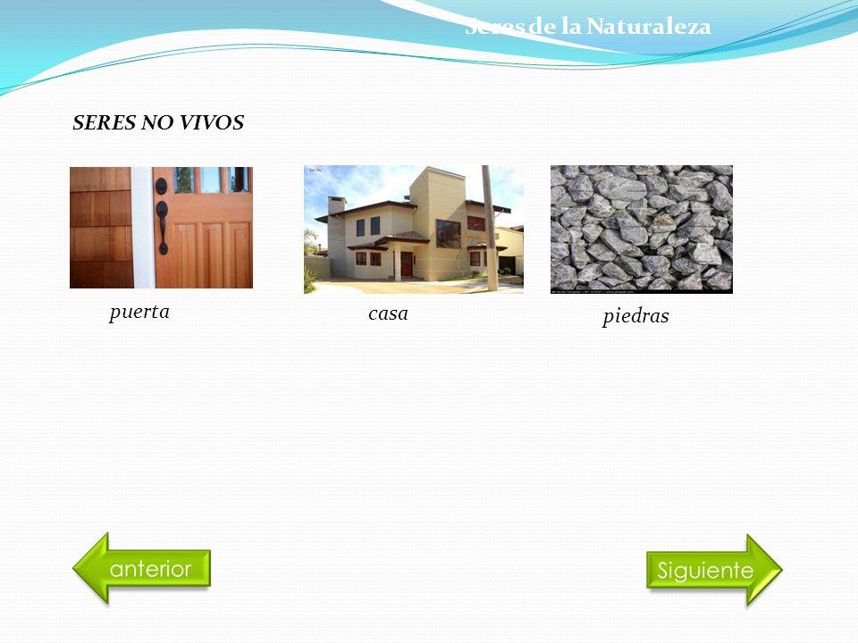 SERES NO VIVOS puerta casa piedras Seres de la Naturaleza