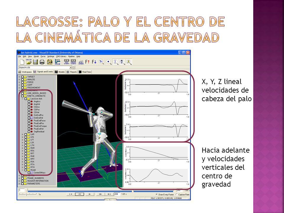 X, Y, Z lineal velocidades de cabeza del palo Hacia adelante y velocidades verticales del centro de gravedad