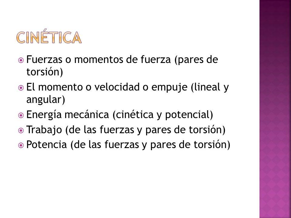Fuerzas o momentos de fuerza (pares de torsión) El momento o velocidad o empuje (lineal y angular) Energía mecánica (cinética y potencial) Trabajo (de