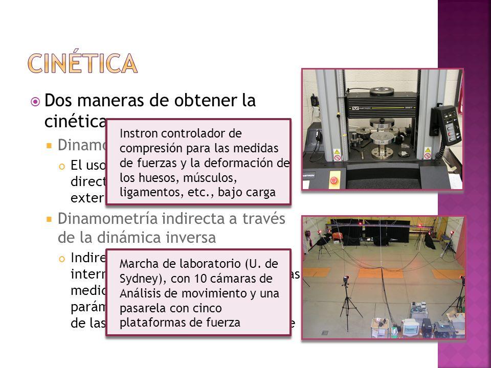 Dos maneras de obtener la cinética Dinamometría directa El uso de instrumentos para medir directamente e igual las fuerzas externas e internas Dinamom