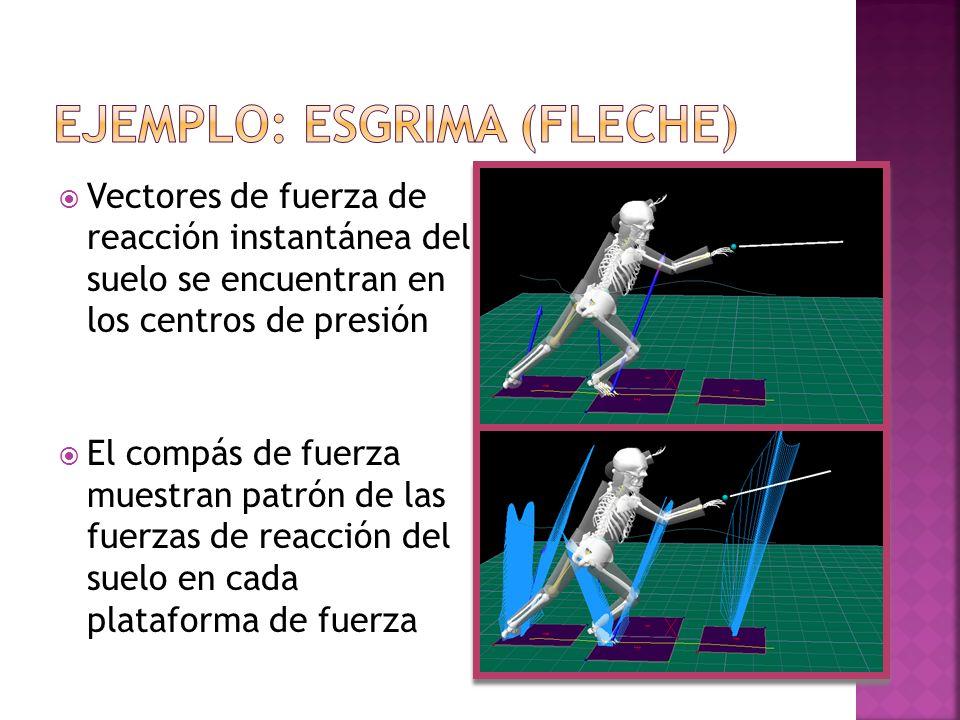 Vectores de fuerza de reacción instantánea del suelo se encuentran en los centros de presión El compás de fuerza muestran patrón de las fuerzas de rea