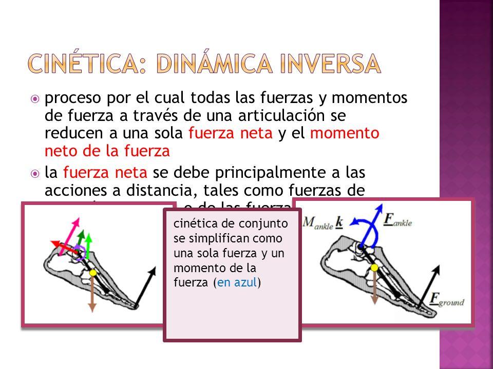proceso por el cual todas las fuerzas y momentos de fuerza a través de una articulación se reducen a una sola fuerza neta y el momento neto de la fuer