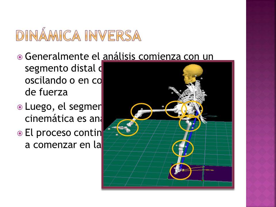 Generalmente el análisis comienza con un segmento distal que esta libramente oscilando o en contacto con una plataforma de fuerza Luego, el segmento s