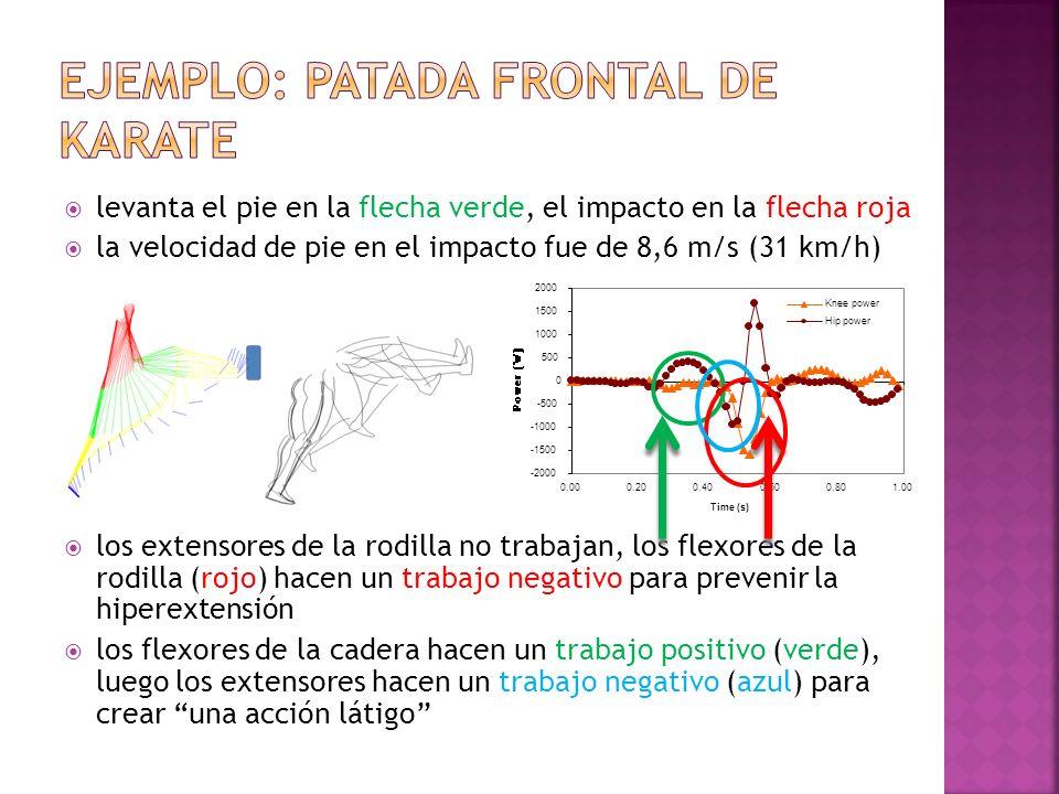 levanta el pie en la flecha verde, el impacto en la flecha roja la velocidad de pie en el impacto fue de 8,6 m/s (31 km/h) los extensores de la rodill