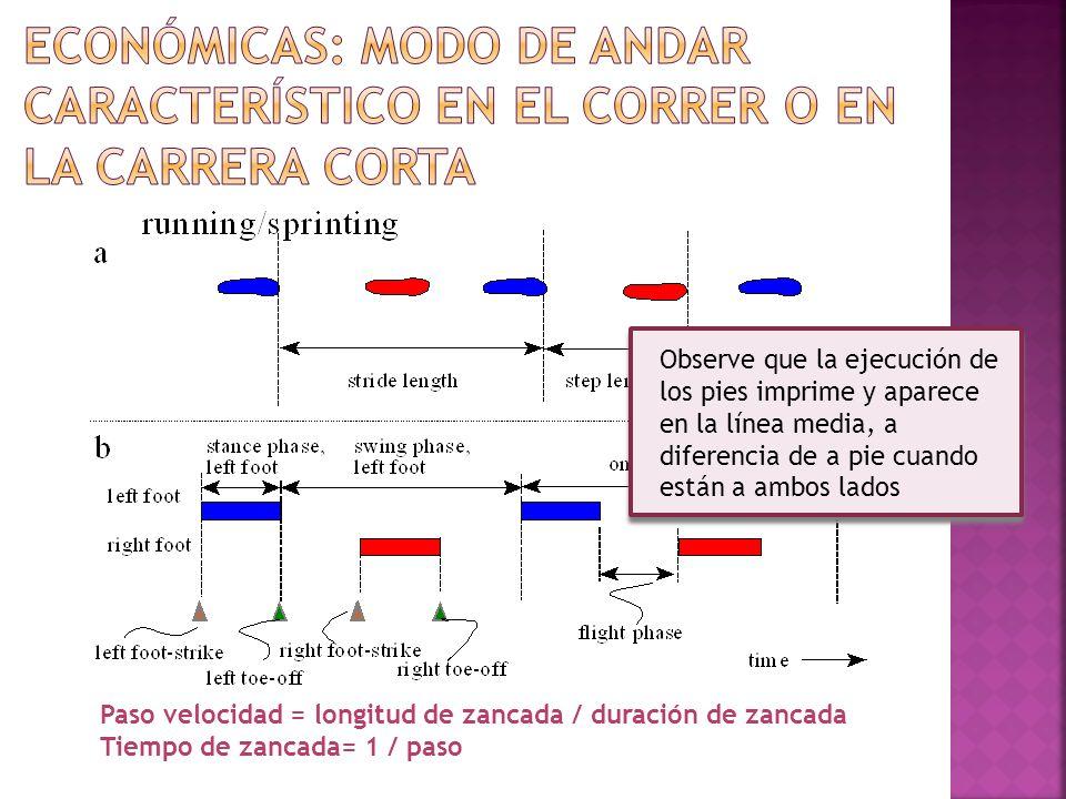 Observe que la ejecución de los pies imprime y aparece en la línea media, a diferencia de a pie cuando están a ambos lados Paso velocidad = longitud d