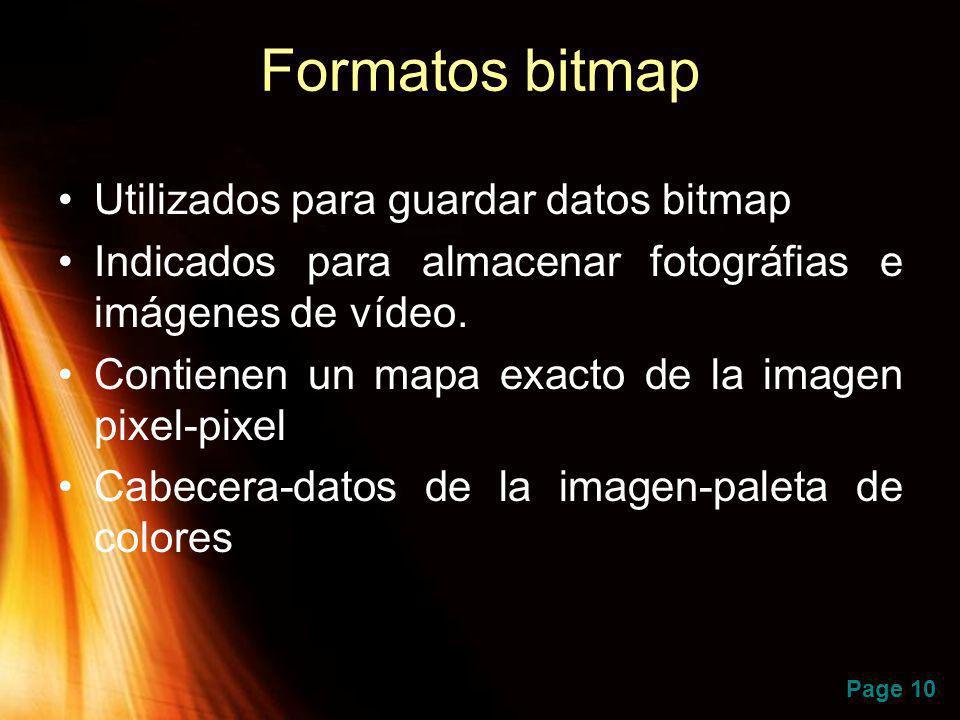 Page 10 Formatos bitmap Utilizados para guardar datos bitmap Indicados para almacenar fotográfias e imágenes de vídeo. Contienen un mapa exacto de la