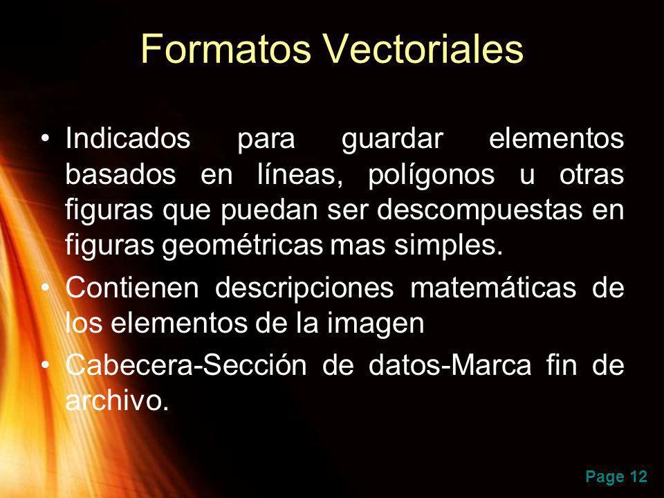Page 12 Formatos Vectoriales Indicados para guardar elementos basados en líneas, polígonos u otras figuras que puedan ser descompuestas en figuras geo