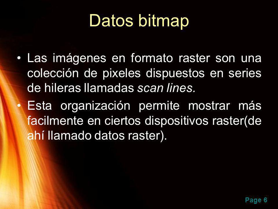 Page 6 Datos bitmap Las imágenes en formato raster son una colección de pixeles dispuestos en series de hileras llamadas scan lines. Esta organización