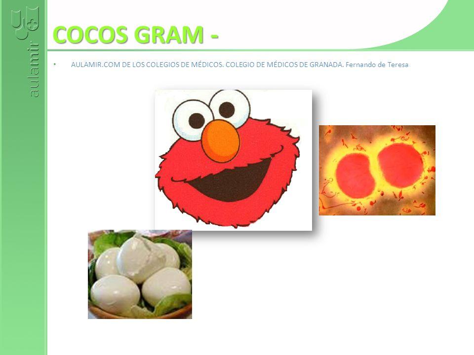 COCOS GRAM - AULAMIR.COM DE LOS COLEGIOS DE MÉDICOS. COLEGIO DE MÉDICOS DE GRANADA. Fernando de Teresa