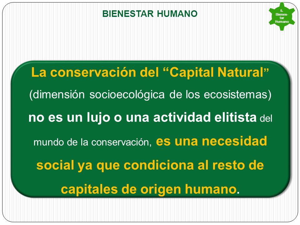 BIENESTAR HUMANO 5.