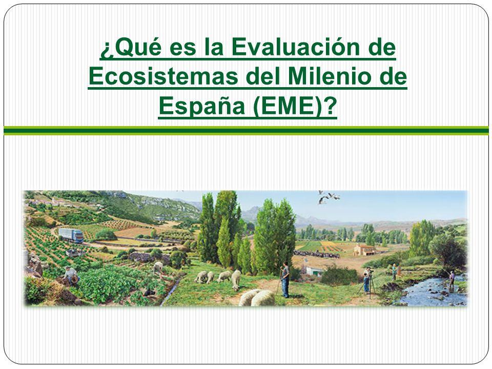 ¿Qué es la Evaluación de Ecosistemas del Milenio de España (EME)?