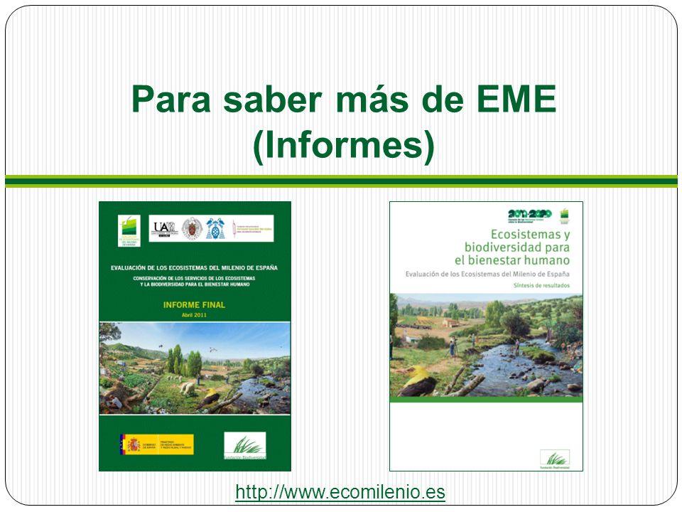 Para saber más de EME (Informes) http://www.ecomilenio.es