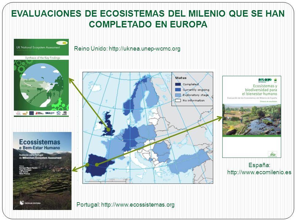 EVALUACIONES DE ECOSISTEMAS DEL MILENIO QUE SE HAN COMPLETADO EN EUROPA Reino Unido: http://uknea.unep-wcmc.org Portugal: http://www.ecossistemas.org España: http://www.ecomilenio.es