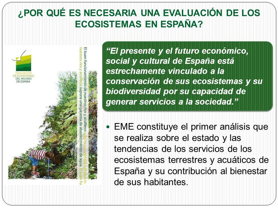 ¿POR QUÉ ES NECESARIA UNA EVALUACIÓN DE LOS ECOSISTEMAS EN ESPAÑA.