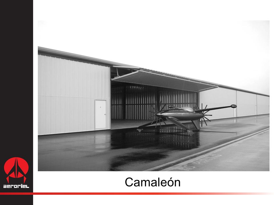 Camaleón