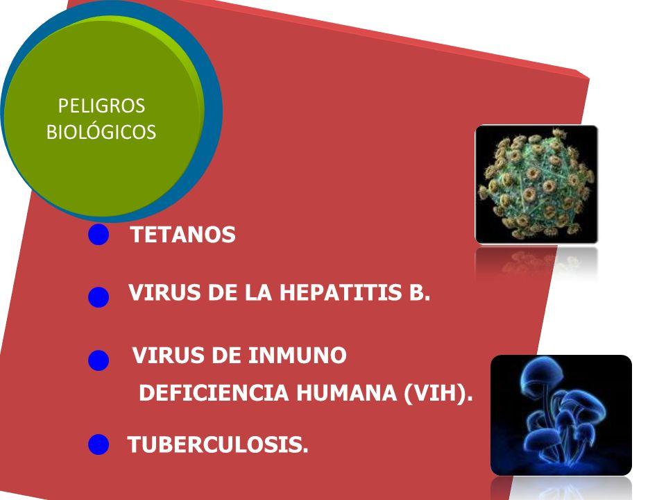 PELIGROS BIOLÓGICOS Son los que se originan por la manipulación de agentes biológicos como virus, bacterias, hongos, parásitos, etc.