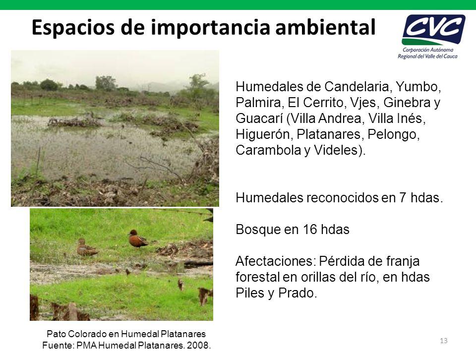 Espacios de importancia ambiental 13 Humedales de Candelaria, Yumbo, Palmira, El Cerrito, Vjes, Ginebra y Guacarí (Villa Andrea, Villa Inés, Higuerón,