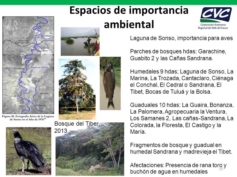 Espacios de importancia ambiental 15 Laguna de Sonso, importancia para aves Parches de bosques hdas: Garachine, Guabito 2 y las Cañas Sandrana. Humeda
