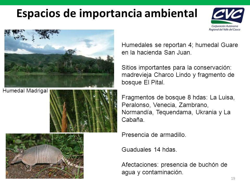 Espacios de importancia ambiental 19 Humedales se reportan 4; humedal Guare en la hacienda San Juan. Sitios importantes para la conservación: madrevie