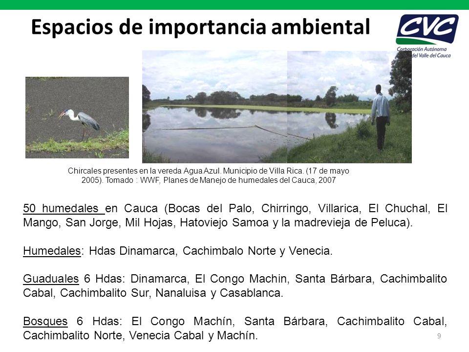 Espacios de importancia ambiental 9 50 humedales en Cauca (Bocas del Palo, Chirringo, Villarica, El Chuchal, El Mango, San Jorge, Mil Hojas, Hatoviejo