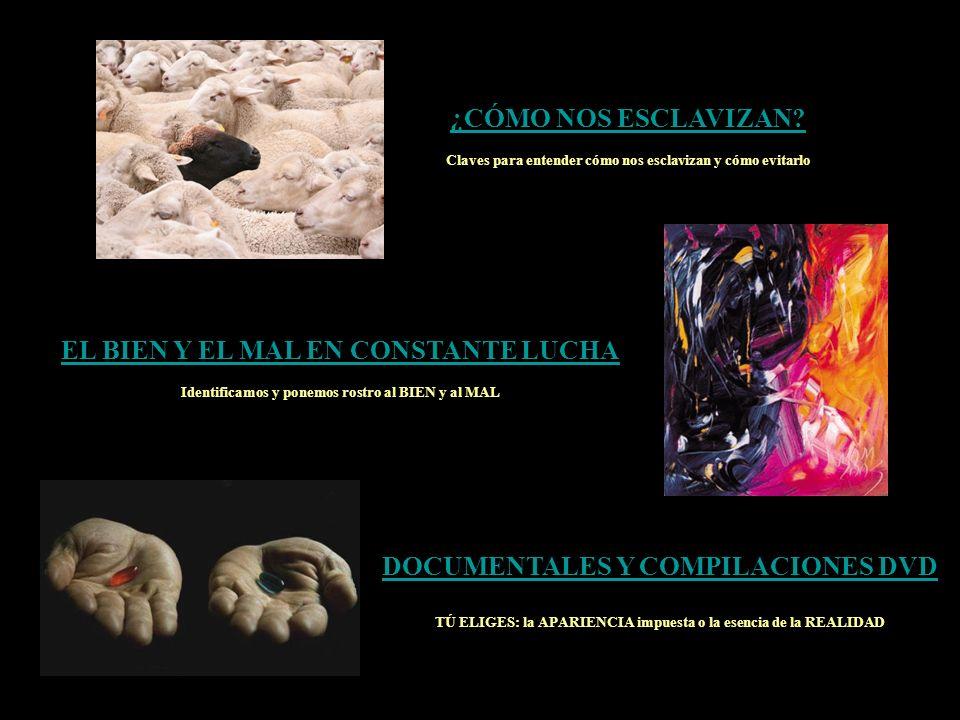 EL PROYECTO MATRIZ ¿Qué es El Proyecto Matriz.