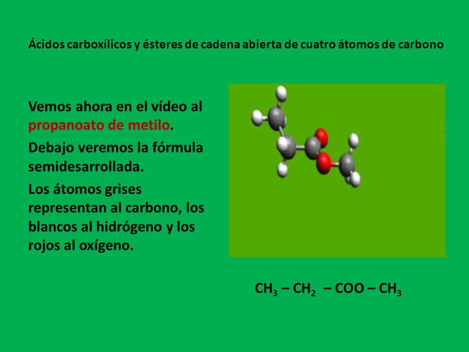 Resumen Ácido butanoicoÁcido metilpropanoicoEtanoato de etilo Metanoato de isopropilo Metanoato de propiloPropanoato de metilo