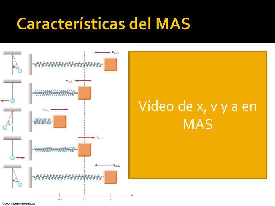 Vídeo de x, v y a en MAS