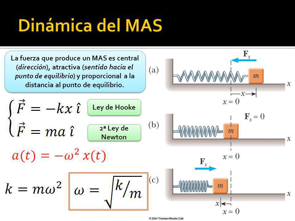 La fuerza que produce un MAS es central (dirección), atractiva (sentido hacia el punto de equilibrio) y proporcional a la distancia al punto de equili