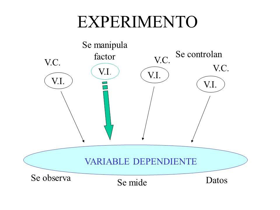 EXPERIMENTO VARIABLE DEPENDIENTE V.I. V.C. Se observa Se mide factor Se controlan Datos Se manipula