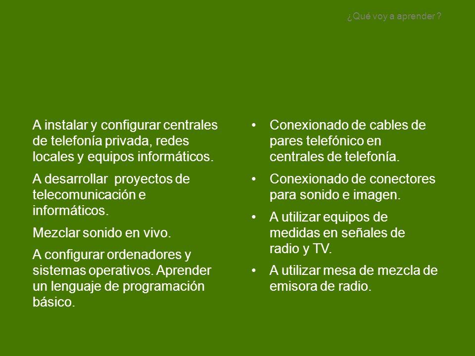 A instalar y configurar centrales de telefonía privada, redes locales y equipos informáticos. A desarrollar proyectos de telecomunicación e informátic